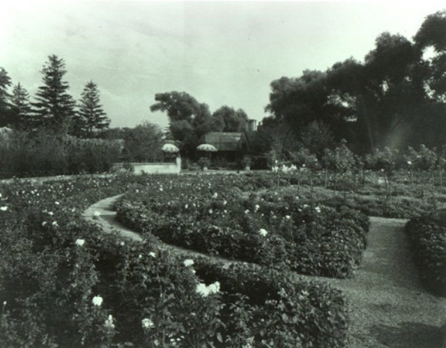 Rose Garden 1931